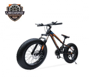 Uboard Electric Bike