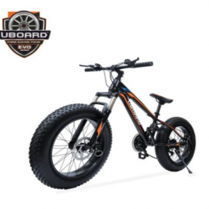 Uboard Electric Bike