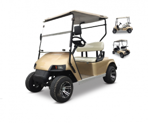 IGS ROOTGA2 ELECTRIC TWO SEATER GOLF CART