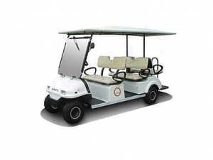 MAINIBUGGY6SEATER