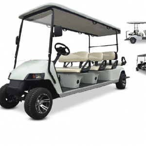 RO A6-ELECTRIC SIX PLUS 2 SEATER GOLF CART