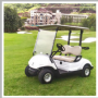 YAMAHA GOLF CART TWO SEATER